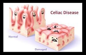 happy cells = happy you!